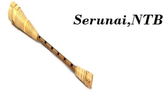 Alat Musik Serunai